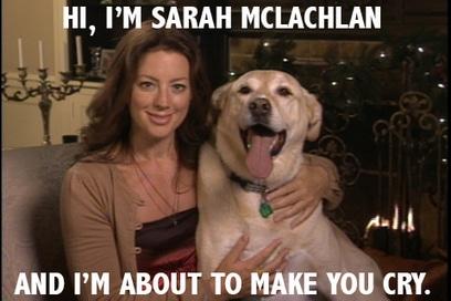 Sarah McLachlan ASPCA Meme